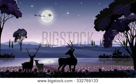 Panorama Landscape Winter Wonderland In Dark Night With Reindeers Family Standing By The Lake With S