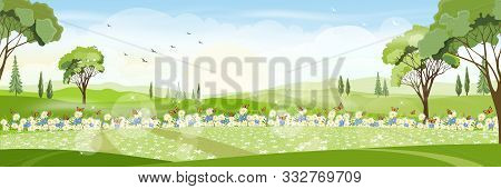 Cute Cartoon Panorama Landscape Of Spring Field  With Butterfly Flying Over Daisy Flowers, Lovely Ca