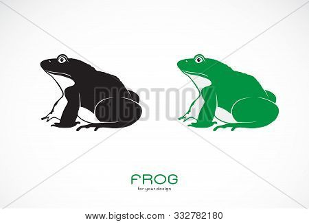 Vector Of Green Frogs And Black Frog On White Background. Amphibian. Animal. Frog Icon Or Logo. Easy