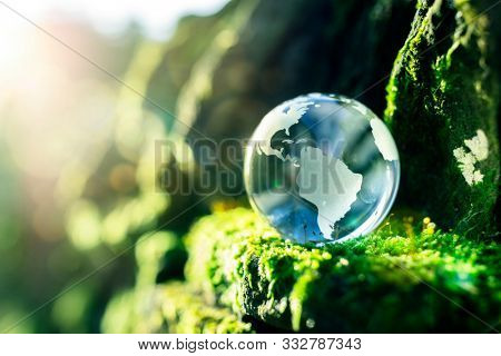 Glass globe in the in nature concept for environment and conservation