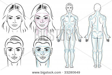 Facial and body massaging lines for man and woman