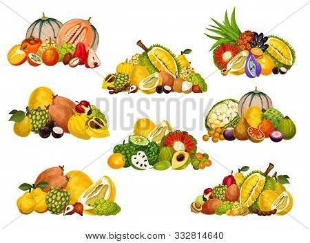 Cantaloupe, Apple Cashew And Persimmon, Pomelo, Quince And Soursop, Jackfruit, Bergamot And Cherimoy