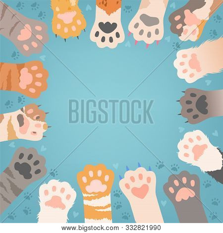 Cats Paw Background. Funny Domestic Kitten Pets Or Wild Animals Different Paws With Claws Vector Ill
