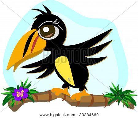 巨嘴鸟鸟在平衡