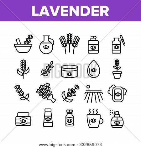 Lavender Collection Elements Icons Set Vector Thin Line. Lavender Flower And Drop, Container With Co