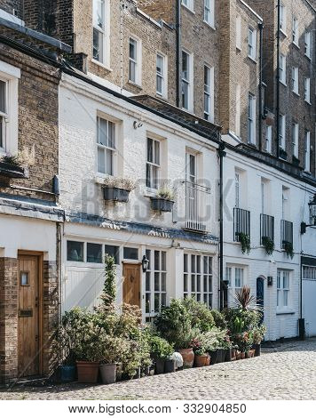 Rows of a typical mews house in London, UK, many plant pots by the entrance. Real estate and property concept. poster