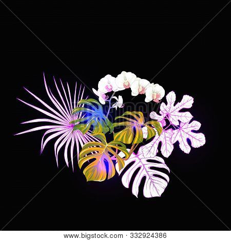 A Composition Of Tropical Plants, Palm Leaves, Monsters And White Orchids In Botanical Style Colored