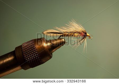 Fly For Fly Fishing In A Vice