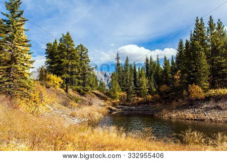 Bright autumn day in Indian summer. Shallow lake with yellow autumn leaves. The valley of Kananaskis mountain park. The Canadian Rockies. The concept of active, ecological and photo tourism