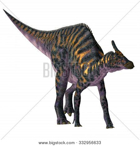 Saurolophus Osborni Dinosaur 3d Illustration - Saurolophus Osborni Was A Hadrosaur Herbivorous Dinos