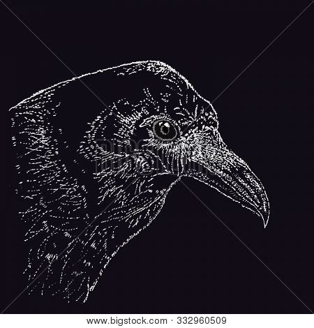 Raven In Pointillism Technique On A Liner On A Black Background