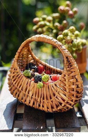 Ripe Fresh Raspberries And Blackberries With Straw Basket