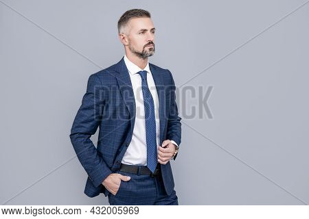 Mature Ambitious Man Businessman In Businesslike Suit Has Grizzled Hair, Business Proffessionals