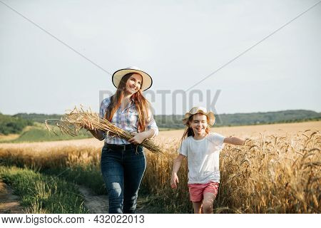 Mother And Daughter Farmers With Ears Of Wheat In Their Hands Walk Through The White Wheat Field. Fa