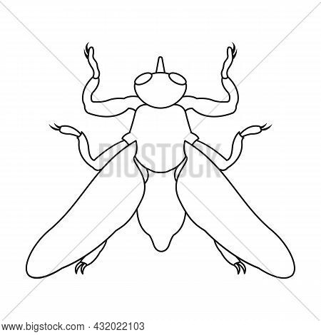 Parasites Fly Vector Icon.outline Vector Icon Isolated On White Background Fly Parasites.