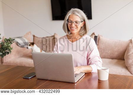 Happy mature businesswoman sitting at desk and working on laptop at the home. Smiling gray-haired middle aged lady using laptop at living room