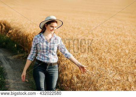 Agronomist Woman With Hat Studying Wheat Harvest In The Field. Business Woman Analyzing Grain Harves