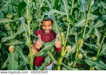 Farmer Is Successful Showing Thumbs Up. African American Male Farmer Smiling Is Cheerful With Thumb