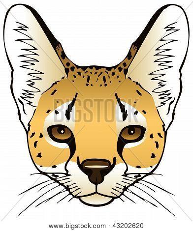 Serval Head
