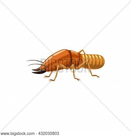 Termite Icon, Pest Control Insects Disinsection And Extermination, Vector Isolated. Termite Insects