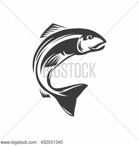 Salmon Ray-finned Underwater Animal Freshwater Fish Isolated Monochrome Icon. Vector Seafood, Marine