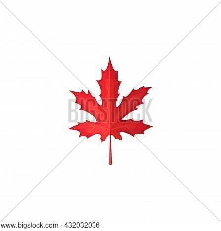 Maple Leaf Red, Autumn And Fall Tree Leaves Icon, Vector Isolated Foliage. Canadian Red Maple Leaf,