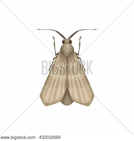 Moth Icon, Insect Pest Control Disinsection And Domestic Sanitary Extermination, Vector. Moth Or Clo