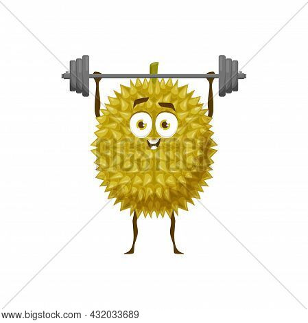 Durian Fruit With Gym Barbell, Healthy Food In Fitness Activity, Vector Cartoon Character. Topical F
