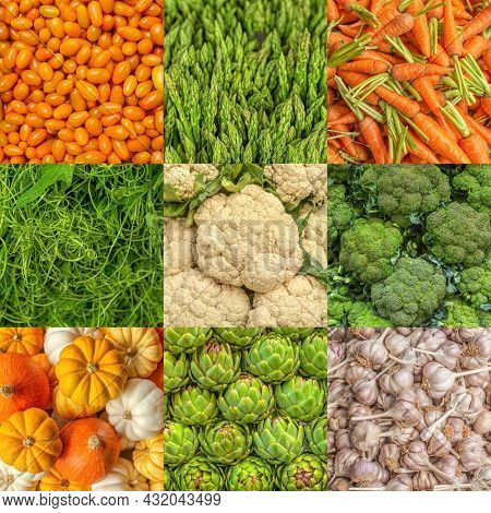Various Herbs And Vegetables: of green artichokes, Yellow Cherry Tomato, young Carrot, stems of asparagus, colourful pumpkins, Water Spinach Splitter, cauliflowers, broccoli, Garlic Cloves