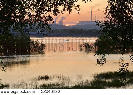 Sunrise Over The Ob River. Pink Morning Over The Siberian River, Trees In The Water, Hanging Branche
