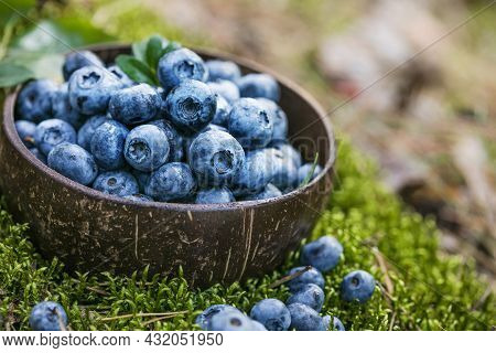 Blueberry Antioxidant Organic Superfood In A Bowl Concept For Healthy Eating And Nutrition.macro Tex