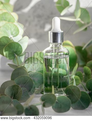 Essential Oil In Dropper Glass Bottle, Hydrating Hyaluronic Serum With Eucalyptus Extract, Skin Care