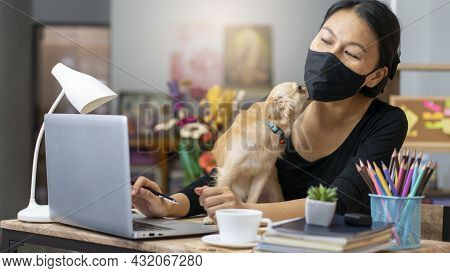 Business Woman Wear Mask , And Play With Dog, Working Online At The Home Office Via Laptop. Asian Yo