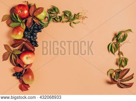Thanksgiving Harvest Concept. Autumn Vintage Layout With Copy Space Top View.