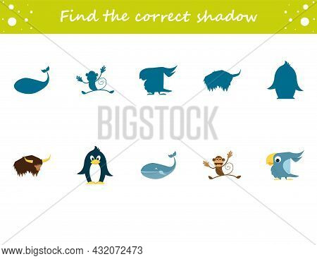 Find The Correct Shadow Penguin, Yak, Parrot, Monkey, Whale. Education Worksheet. Matching Game For