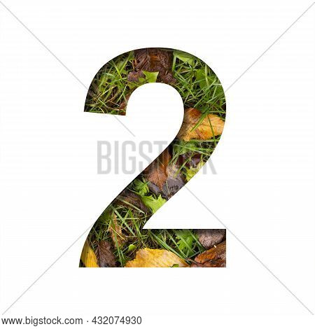 Early Autumn Font. Digit Two, 2 Cut Out Of Paper On A Background Of Green Grass With Yellow Autumn L