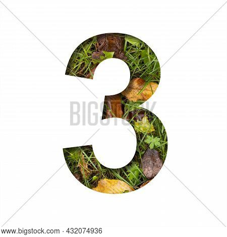 Early Autumn Font. Digit Three, 3 Cut Out Of Paper On A Background Of Green Grass With Yellow Autumn