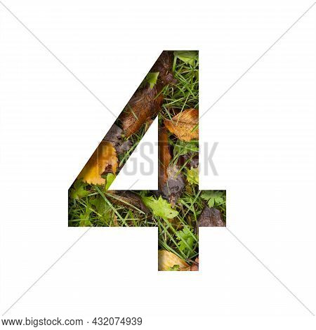 Early Autumn Font. Digit Four, 4 Cut Out Of Paper On A Background Of Green Grass With Yellow Autumn