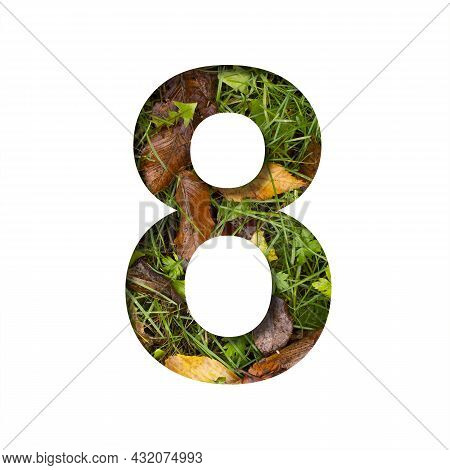 Early Autumn Font. Digit Eight, 8 Cut Out Of Paper On A Background Of Green Grass With Yellow Autumn