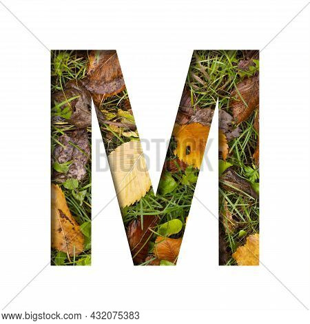Early Autumn Font.the Letter M Cut Out Of Paper On A Background Of Green Grass With Yellow Autumn Le