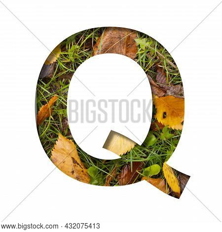 Early Autumn Font.the Letter Q Cut Out Of Paper On A Background Of Green Grass With Yellow Autumn Le