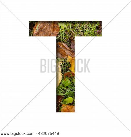 Early Autumn Font.the Letter T Cut Out Of Paper On A Background Of Green Grass With Yellow Autumn Le