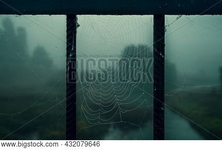 Gloomy Dark Night Background With Cobwebs In The Forest