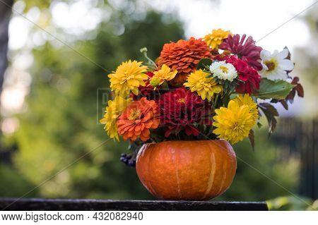 A Beautiful Autumn Bouquet In A Pumpkin On A Wooden Bench In The Garden. Garden Flowers. Thanksgivin