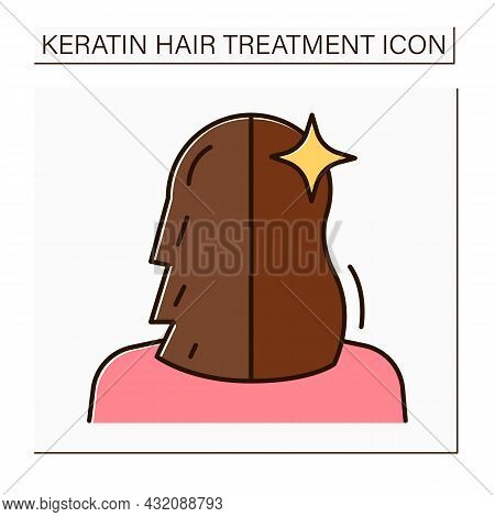 Hair Treatment Color Icon. Keratin Cure Result. Hair Before And After. Haircare In Salon. Beauty Pro