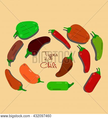 Chili Types, Vector. Sweet, Hot, Habanero, Spicy, Pod, Tree Chili. Set Of Chili Peppers Of Different