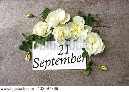September 21st . Day 21 Of Month, Calendar Date. White Roses Border On Pastel Grey Background With C