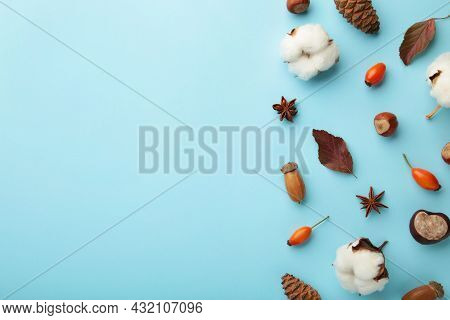 Autumn Composition. Dried Leaves, Flowers, Berries On Blue Background. Thanksgiving Day Concept.