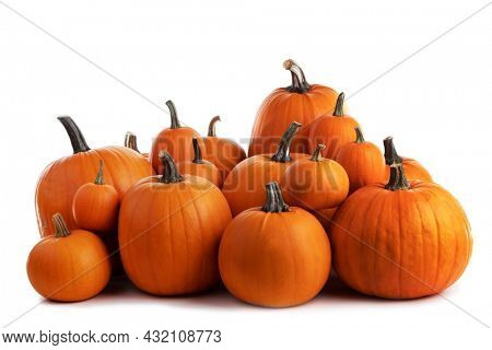 Heap of many harvest orange pumpkins isolated on white background , Halloween or Thanksgiving celebration concept