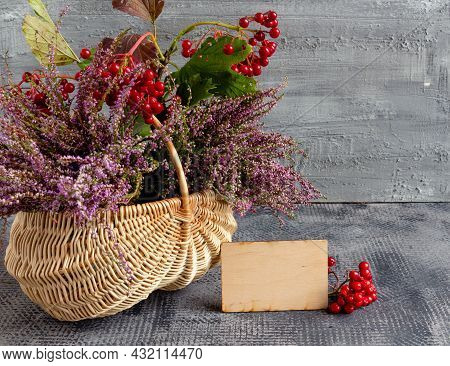 Autumn Still Life On Concrete Background, Basket With Heather And Viburnum And Empty Postcard, Thank